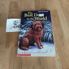 The Best Dog in the World世界上非常好的狗