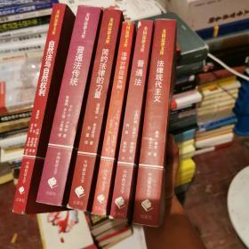 美国法律文库:《普通法传统》《简约法律的力量》《法律分析应当为何》《普通法》《法律现代主义》《自然法与自然权利》六册合售