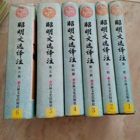 昭明文选译注全六册