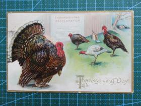 {会山书院}24#欧洲1910年左右(火鸡)凸版、贴邮票实寄明信片-收藏集邮-复古手账-外国邮政