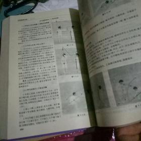 中华武术大全
