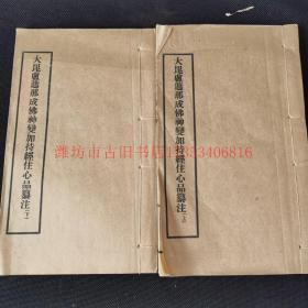 民国16年上海泰东书局铅印本《大毗卢遮那成佛神变加持经住心品纂注二卷》2册全 品佳