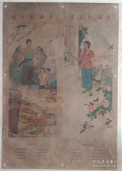 中國經典年畫宣傳畫大展示---文革年畫系列---《淀上新社員》--四條屏-----虒人榮譽珍藏