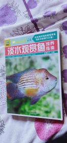 淡水鱼饲养百科指南-饲养系列观赏鱼