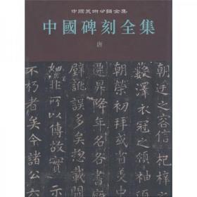 中国碑刻全集5 唐 人民美术出版社