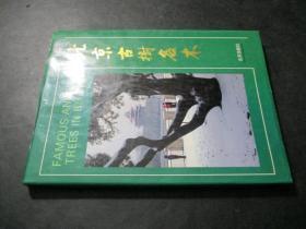 北京古树名木