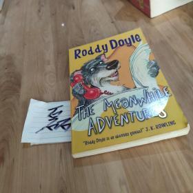 英文原版插图本 The Meanwhile adventures by Roddy Doyle