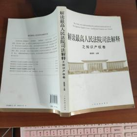 解读最高人民法院司法解释之知识产权卷 奚晓明编  人民法院出版社