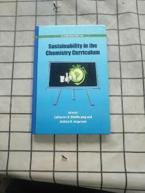 Sustainability in the Chemistry Curriculum 进口原版现货