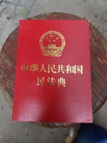 中华人民共和国民法典(2020年6月  64开本)