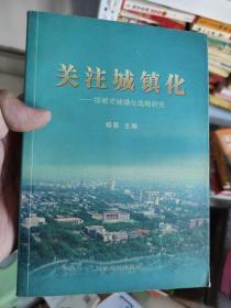 关注城镇化——邯郸市城镇化战略研究