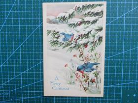 {会山书院}95#欧洲1910年左右(小鸟)空白未使用明信片-收藏集邮-复古手账-外国邮政
