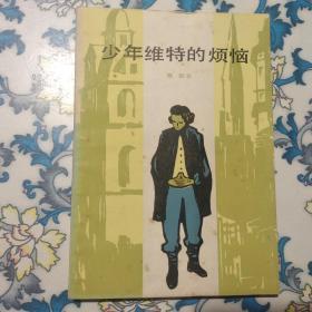 少年维特的烦恼 上海译文,