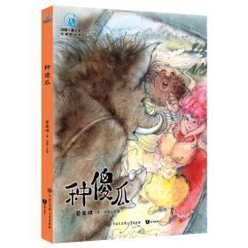 中国儿童文学大视野丛书:种傻瓜