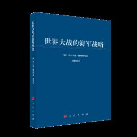 世界大战的海军战略(大国海洋战略译丛)