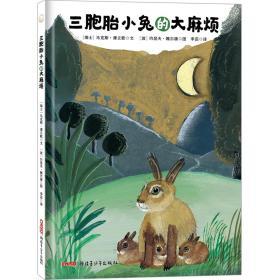 贝贝熊童书馆:三胞胎小兔的大麻烦(精装绘本)
