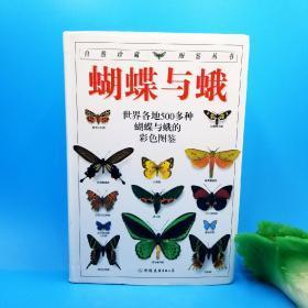 蝴蝶与蛾(一版一印):全世界500多种蝴蝶的彩色图鉴
