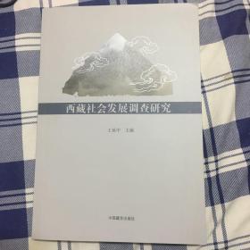 西藏社会发展调查研究