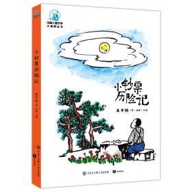 中国儿童文学大视野丛书:小钞票历险记