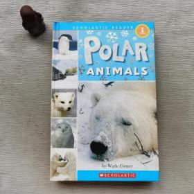 PolarAnimals(POB)(LEVEL1)极地动物