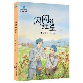 中国儿童文学大视野丛书:闪闪的红星