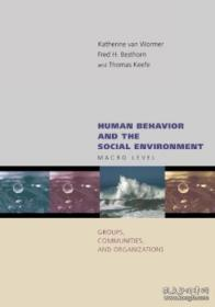 Human Behavior And The Social Environment: Macro Level: Groups Communities And Organizations-人类行为与社会环境:宏观层面:群体、社区与组织