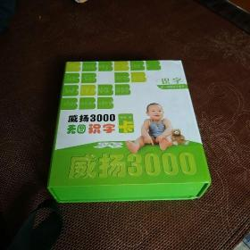 威扬3000无图识字(一套3000张识字卡片)