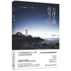 大洋之间的光 一部让人痛彻心扉又饱含期待的惊艳处女作 外国文学情感畅销书籍外国文学情感小说