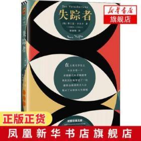 失踪者(每个在异乡漂泊的人,都要读一读《失踪者》,去活成自己想要的样子!)(读客经典文库)