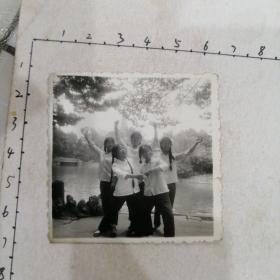 五美女忠字舞照片