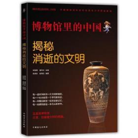 博物馆里的中国:揭秘消逝的文明