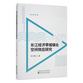 长江经济带城镇化空间效应研究
