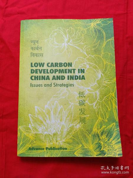 LOW CARBON DEVELOPMENT IN CHINA AND INDIA 低炭发展