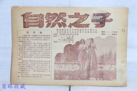 建国初期《自然之子》电影黑板报一张--捷克斯洛伐克共和国电影局斯洛伐克分厂、中央电影局东北电影制片厂