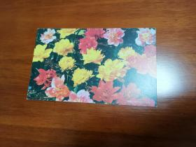 鮮花單枚明信片