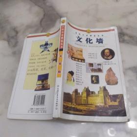百科小史博览丛书《文化墙》