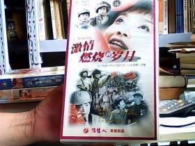 激情燃烧的岁月 二十二集电视连续剧 VCD 二十二碟
