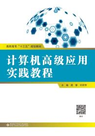 计算机高级应用实践教程(高职)