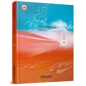 追风逐梦:中国人的高铁故事