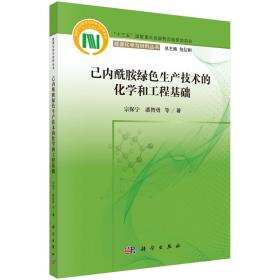 己内酰胺绿色生产技术的化学和工程基础