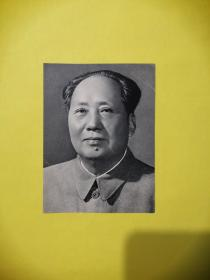 毛澤東主席標準像