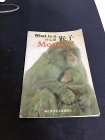 什么是猴子(銅版紙彩插)