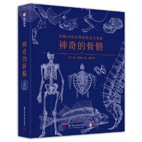 神奇的骨骼:探秘96种动物的形态与奥秘