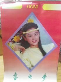 1993春之梦美女挂历   全13页