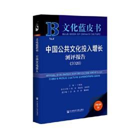 中国公共文化投入增长测评报告(2020)