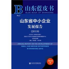 山东蓝皮书:山东省中小企业发展报告(2019)