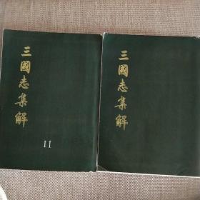 三国志集解一二(不是正版,私人印制的。字迹不错)