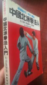 中国北派拳法入门
