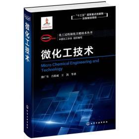 化工过程强化关键技术丛书--微化工技术