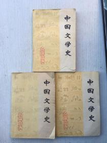 中国文学史 (上中下册)